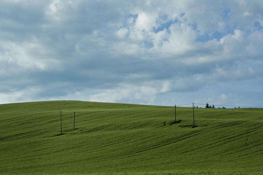 Wallpaper Windows 95 Xd Andrea Ceccaroni Flickr