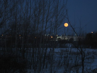 This morning's full, blue moon   by soelo