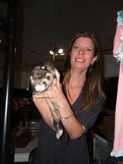 Toronto Ferret Rescue!