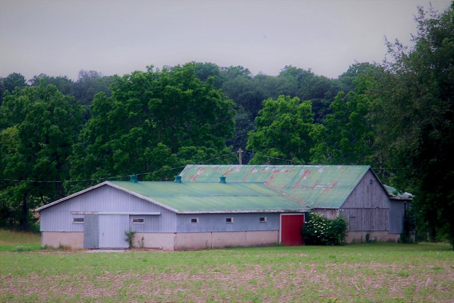 Another Barn in Ontario's Countryside