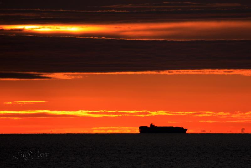 Container Ship Sagunto Dawn by S@ilor