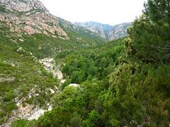 Montée sur la piste : Figa Bona (Mela) et brèche du Carciara au fond