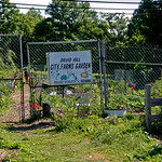 Druid Hill City Farms Garden