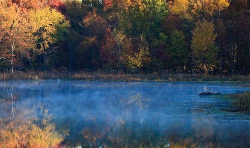 morning mist lake fall colors sunrise firstlight lakebenson photocontestfall10