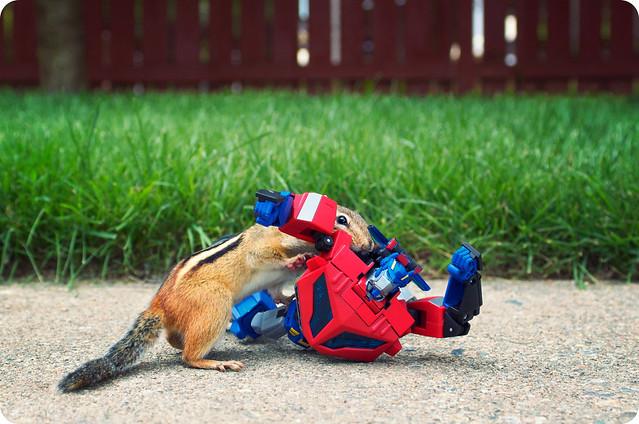 Optimus Prime vs. Megamunk