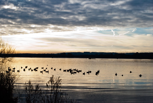 130210_ Strathclyde Park_ 008 (044/365) | by Headphonaught