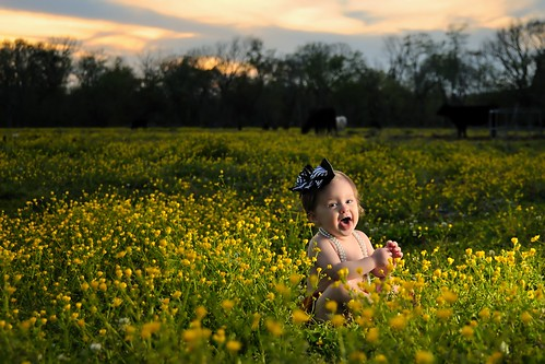 flowers sunset portrait sky baby girl field clouds necklace texas child tx oneyearold brazoria sb900 bluecityphotographycom