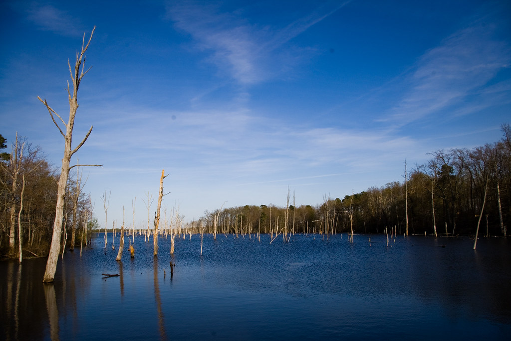 Manasquan reservoir