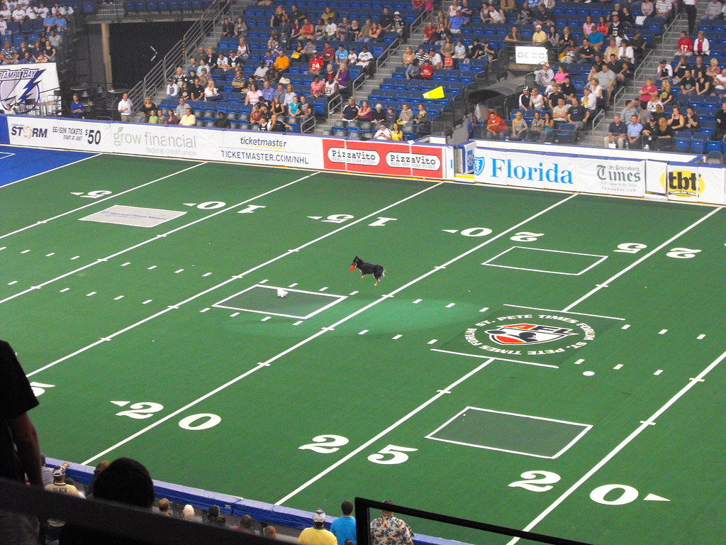 Storm Game 4-16
