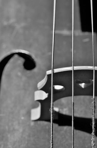 A Piece of Cello