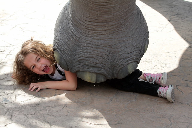 Kids Giving you problems? Hire an Elephant