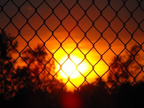 sunset summer fence