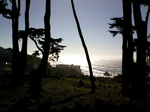 Coastal Trail, San Francisco #7