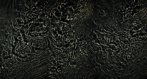 light shadow water virginia triptych richmond vmfa