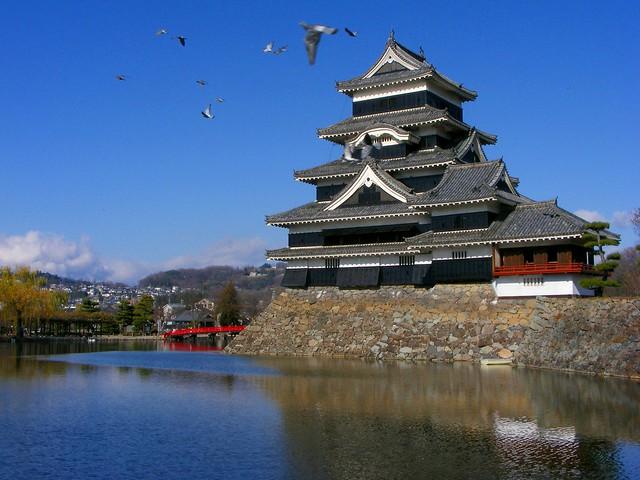 Matusmoto Castle and pigeons