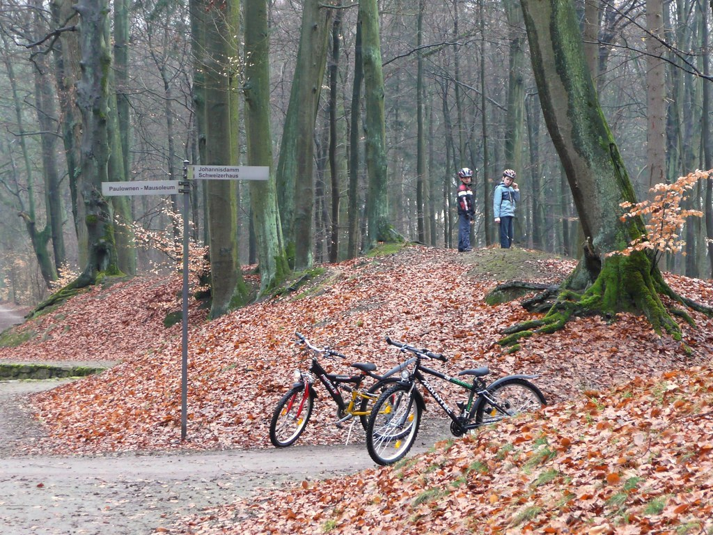 Mecklenburg-Schwerin '10