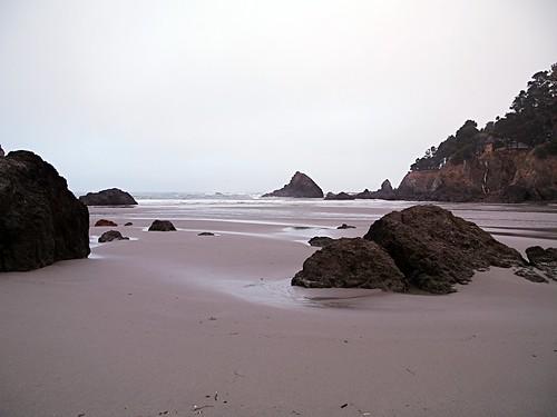 arloguthrie mendocinocoast california leicadigilux3 leicadvarioelmar14150mm