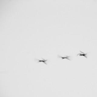 Triple Flyby | by J e n s