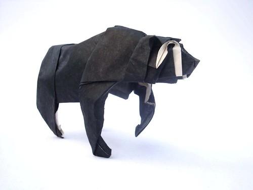 Spectacled Bear 1.1 (メガネグマ)