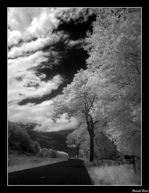 sur la route d'eternoz  **infrarouge**