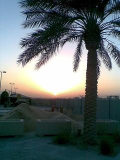 Saudi Arabian Landscape