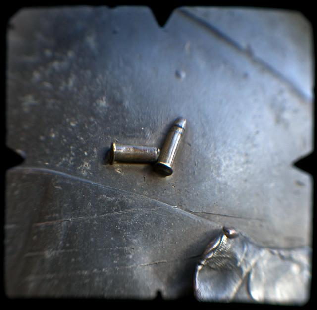 Wombat Bullets (Urban Grammar, shot on World TTV Day 19 June 2010) nº 34