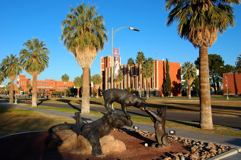 """Résultat de recherche d'images pour """"arizona u  campus photos"""""""
