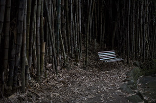 Bamboo bench   by genericavatar