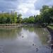 Hackney Brook