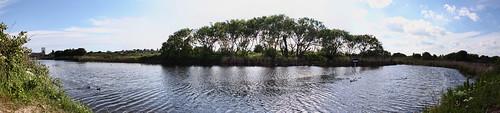 Milton Swan Lake | by Hexagoneye Photography