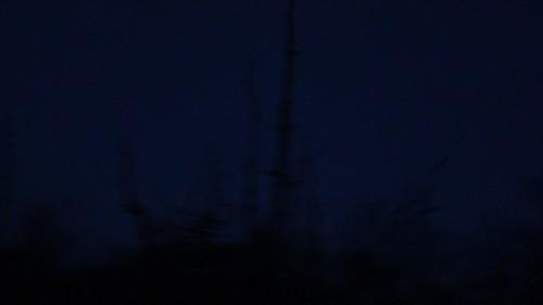 dark virginia video spring earlymorning hike westvirginia woodstockva georgewashingtonnationalforest