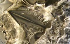 Bismuth Crystal   by Paul's Lab