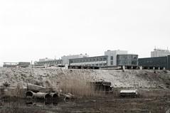 Delft ruins