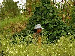 cotacachi-organic-worker | by ecuadorliving