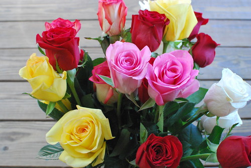 Mother's Day Roses   by slgckgc