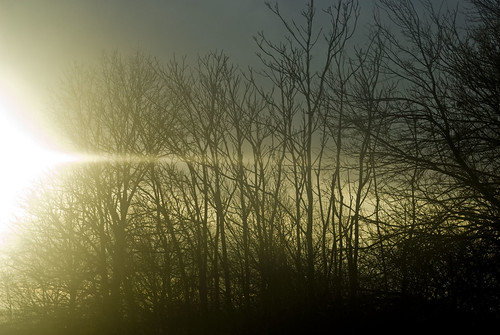 Gloomy sunsets over the NJ Turnpike | by jessgrrrr