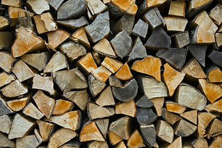 Firewood stacked up to dry showing annual rings | by Horia Varlan
