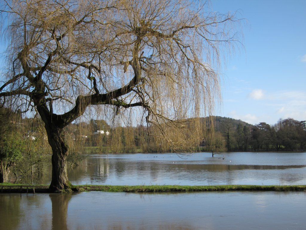 Flooded Field Chantries Hills in the background