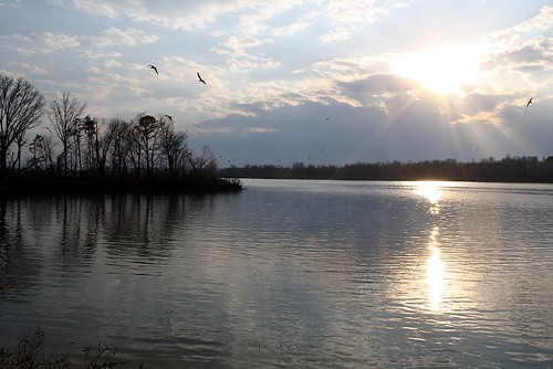 2010-3-7 - 32 - Crab Orchard Lake - Carterville, IL - Mary Rae McPherson photo