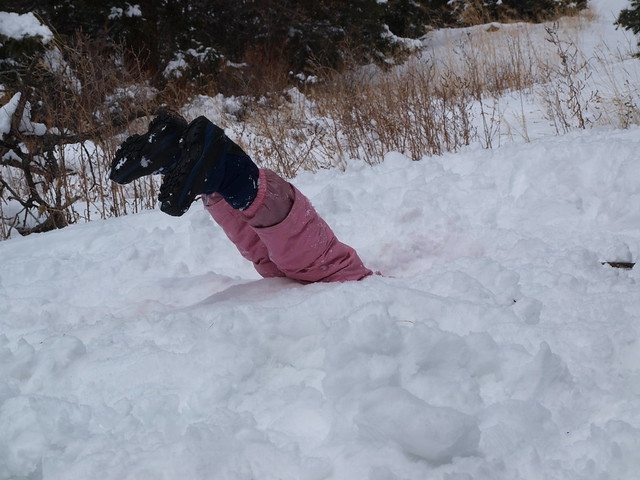 ULTIMATE FACE PLANT