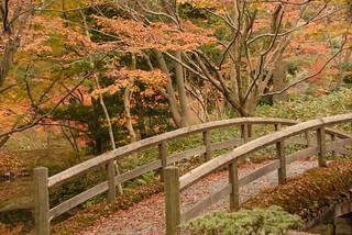 Sentō-gosho Garden, Kyoto   by np&djjewell