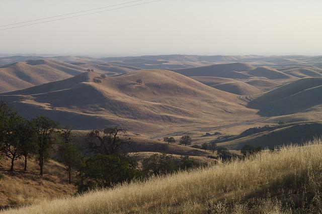 Sierra Foothills