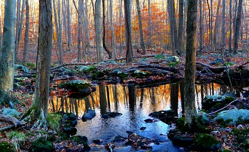 autumn sunset reflection nature newjersey dusk morriscounty turkeymountain