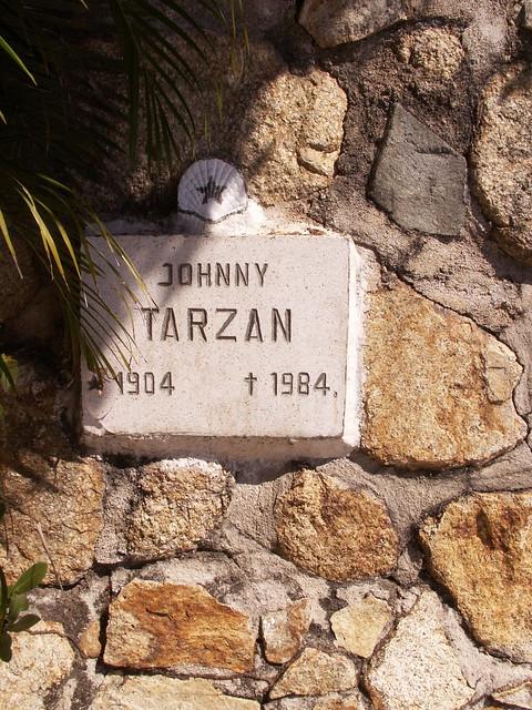 Johnny Tarzan