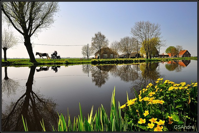 Horse and carriage-border