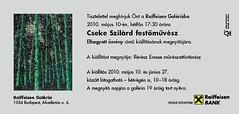 2010. május 6. 20:19 - Cseke  Szilárd: Elhagyott ösvény