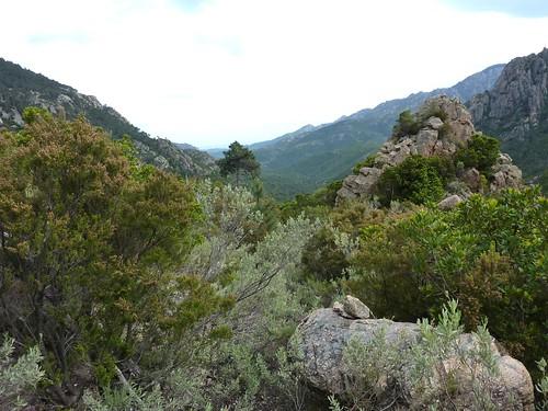 Le chemin en 2010 au niveau du piton rocheux du téléphérique : on voit les cairns de l'époque... et la végétation...