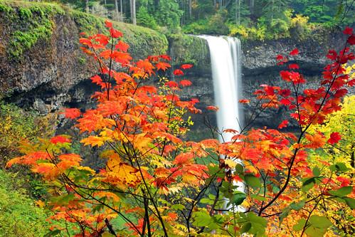 Seasons Change | by Ian Sane