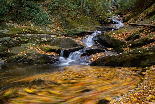 autumn mountains color fall water leaves creek waterfall leaf nc moss log rocks stream northcarolina photograph swirl ncmountains yanceycounty ncwaterfalls roaringforkfalls waterfallphotography davidhopkinsphotography photocontestfall10 ncpedia