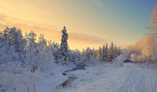 snow alaska day anchorage anawesomeshot goldcollection diamondclassphotographer flickrdiamond theunforgettablepictures recolix